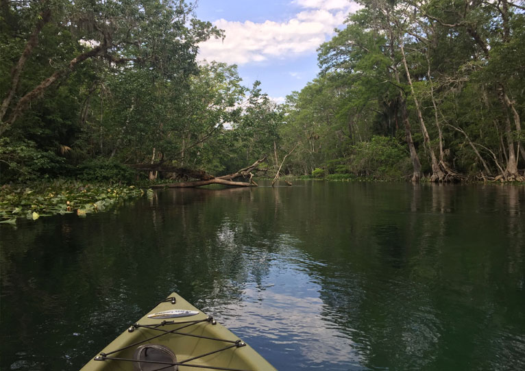 Silver Springs State Park in Florida